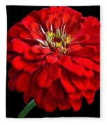 Red Zinnia Fleece Blanket