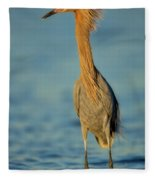 Reddish Egret Fleece Blanket