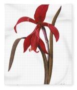 Redout�: St. James Lily Fleece Blanket