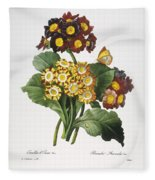 Redoute: Auricula, 1833 Fleece Blanket