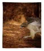 Redtail Morning Run Hawk Art Fleece Blanket