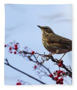 Redwing  - 2 Fleece Blanket
