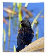 Redwinged Blackbird Fleece Blanket