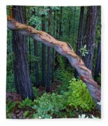 Redwood Forest Fleece Blanket