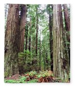 Redwood5 Fleece Blanket
