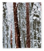 Redwoods In Snow Fleece Blanket