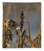 Reed Bunting Fleece Blanket