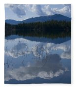Reeds And Reflection Fleece Blanket