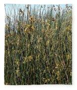 Reeds II Fleece Blanket