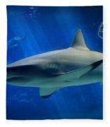 Reef Shark Fleece Blanket