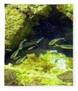 Reef Tide Pool Fleece Blanket