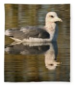 Young Gull Reflections Fleece Blanket