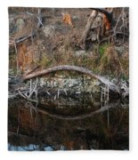 Reflections Iguana Fleece Blanket