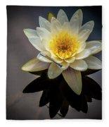 Reflections In A Pond Fleece Blanket