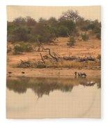 Reflections On Safari Fleece Blanket
