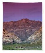 Regal Desert Fleece Blanket