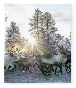 Reindeer On Autumn Sun Fleece Blanket