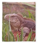 Reptile Land  Fleece Blanket