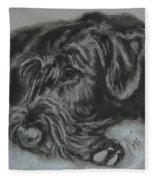 Restful Thoughts Fleece Blanket