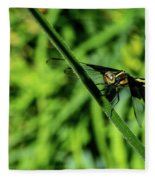 Resting Alert Dragonfly Fleece Blanket