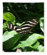 Resting - Black And White Butterfly Fleece Blanket