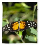 Resting Butterfly Fleece Blanket
