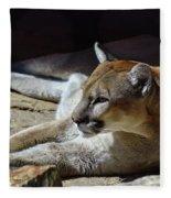 Resting Cougar Fleece Blanket