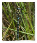 Resting Darner Fleece Blanket