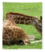 Resting Giraffe Fleece Blanket