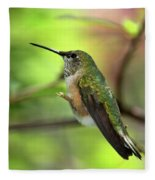 Resting Hummingbird Fleece Blanket
