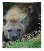 Resting Hyena Fleece Blanket