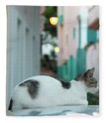 Resting Kitten  Fleece Blanket