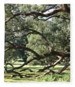 Resting Live Oaks Fleece Blanket