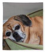 Resting Pooch  Fleece Blanket