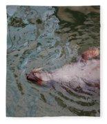 Resting Seal Fleece Blanket
