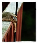 Resting Squirrel Fleece Blanket