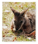 Resting Wallaby Fleece Blanket
