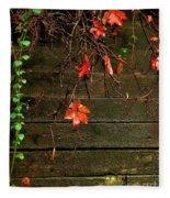 Retaining Wall In Autumn Fleece Blanket