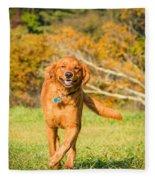 Retriever On The Run Fleece Blanket