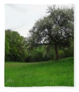Rhineland-palatinate Summer Meadow Fleece Blanket