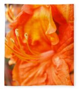 Rhodies Art Prints Orange Rhododendron Flowers Baslee Troutman Fleece Blanket