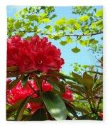 Rhodies Art Prints Red Rhododendron Floral Garden Landscape Baslee Fleece Blanket