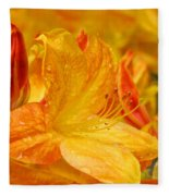 Rhodies Orange Yellow Rhododendrons Art Prints Canvas Baslee Troutman Fleece Blanket