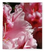 Rhododendrons Art Prints Floral Pink Rhodies Canvas Baslee Troutman Fleece Blanket