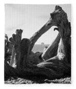 Rialto Beach Cake Rock Driftwood Fleece Blanket
