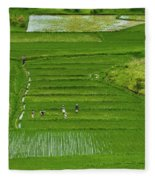 Rice Fields Fleece Blanket