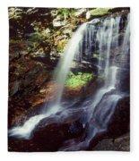 Ricketts Glen Falls 029 Fleece Blanket