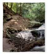 Ricketts Glen Falls 030 Fleece Blanket