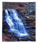 Ricketts Glen Waterfall 3941  Fleece Blanket