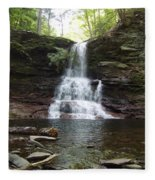 Ricketts Glen Waterfall Fleece Blanket